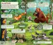Svět zvířat a rostlin
