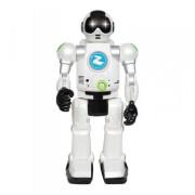 Robot Zigybot s funkcí času, 20 funkcí