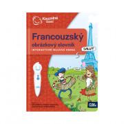 ALBI Kouzelné čtení Francouzský obr. slovník