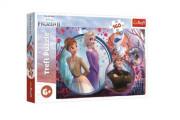 Puzzle Ledové království II/Frozen II 160 dílků