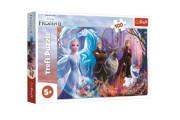 Puzzle Ledové království II/Frozen II 100 dílků