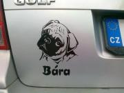 """Nálepka na auto - """"pes v autě"""" se jménem a obrázkem dle vlastního výběru"""