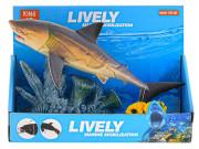 Žralok 25 cm pohyblivé části