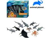 Zvířátka - mořská 10 ks, mobilní aplikace pro zobrazení zvířátek