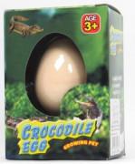 Líhnoucí vejce krokodýl