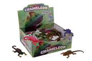 Chameleon měnící barvu