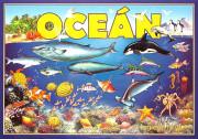 Společenská hra Oceán