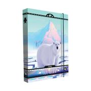 Box na sešity A4 Jumbo Bear