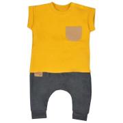 Kojenecké tepláčky a tričko Koala Summer Boy šedo-hořčičové