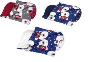 Zateplená dětská deka medvědi 70x100 cm