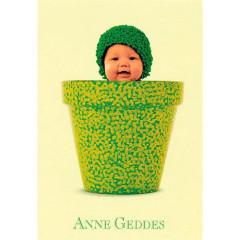 Blahopřání mini Anne Geddes - Zelená v květináči