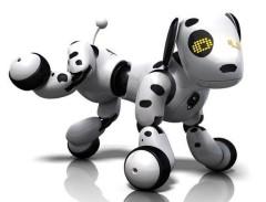 Zoomer interaktivní dalmatin