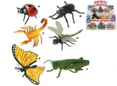 Hmyz 9-13cm 6druhů