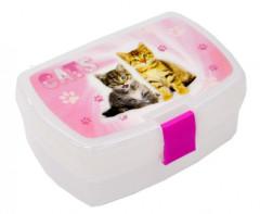 Box na svačinu Kočka CATS
