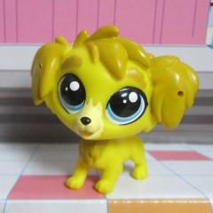 Littlest Pet Shop Jednotlivá zvířátka DAMON GOLDEN 4064