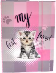 Desky na sešity Heft box A5 Junior kočka NEW 2017