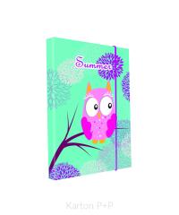Desky na sešity Heft box A4 Jumbo - Sova 2017