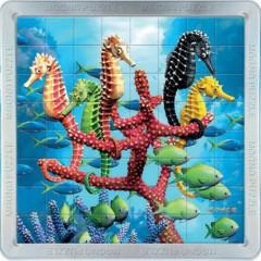 3D Magnetické Puzzle - Mořští koníci