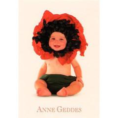 Blahopřání mini Anne Geddes - Vlčí mák