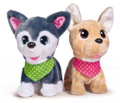CCL Puppy Friends Simba