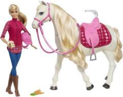 Barbie Kůň snů s panenkou FRV36