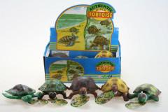 Želva plastová